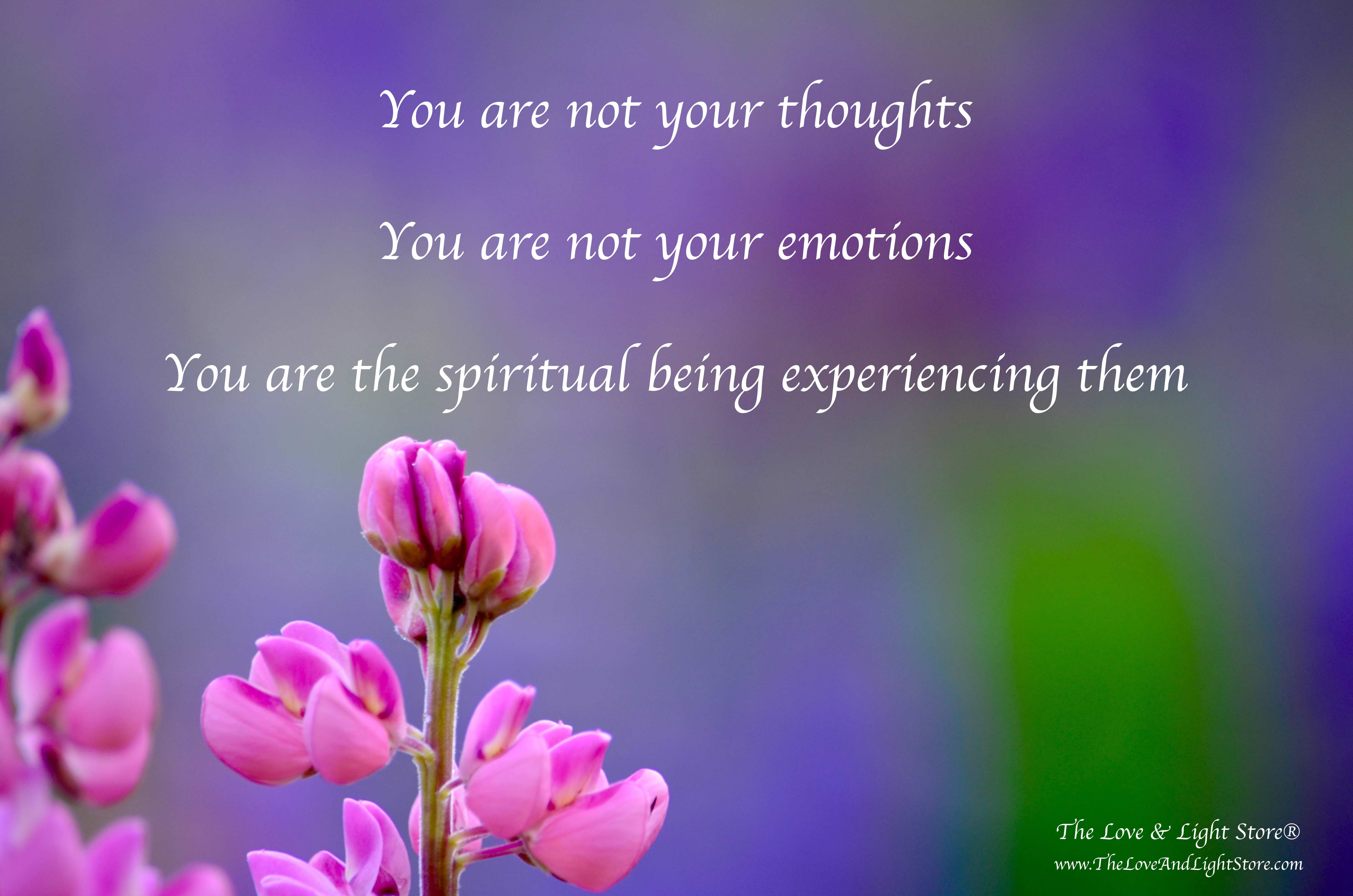 You are not your thoughts nor your emotions