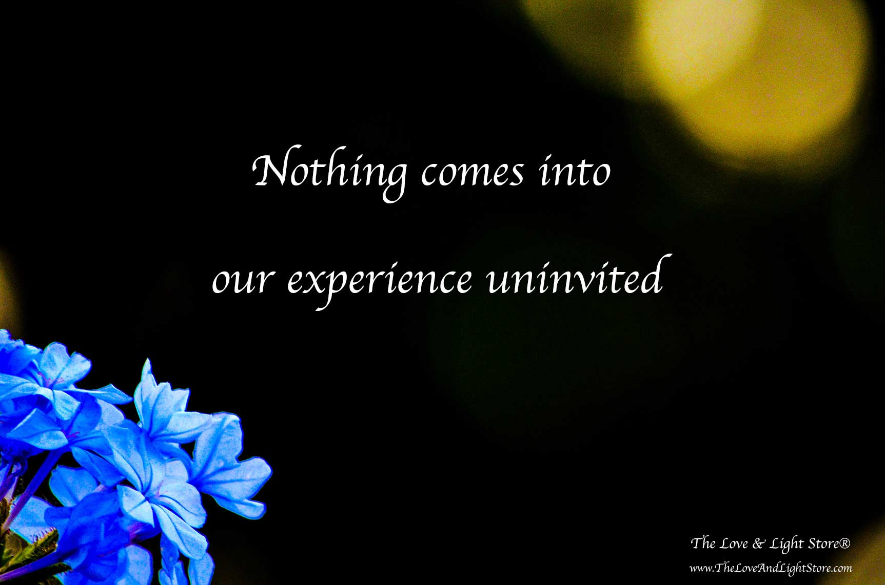 Nothing comes into our experience uninvited