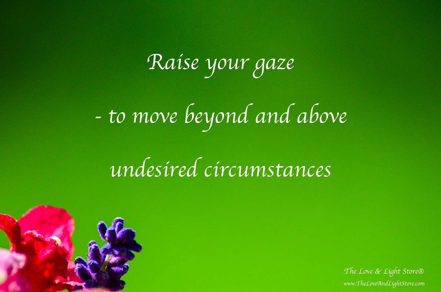 Raise the gaze – to go above and beyond your present circumstances