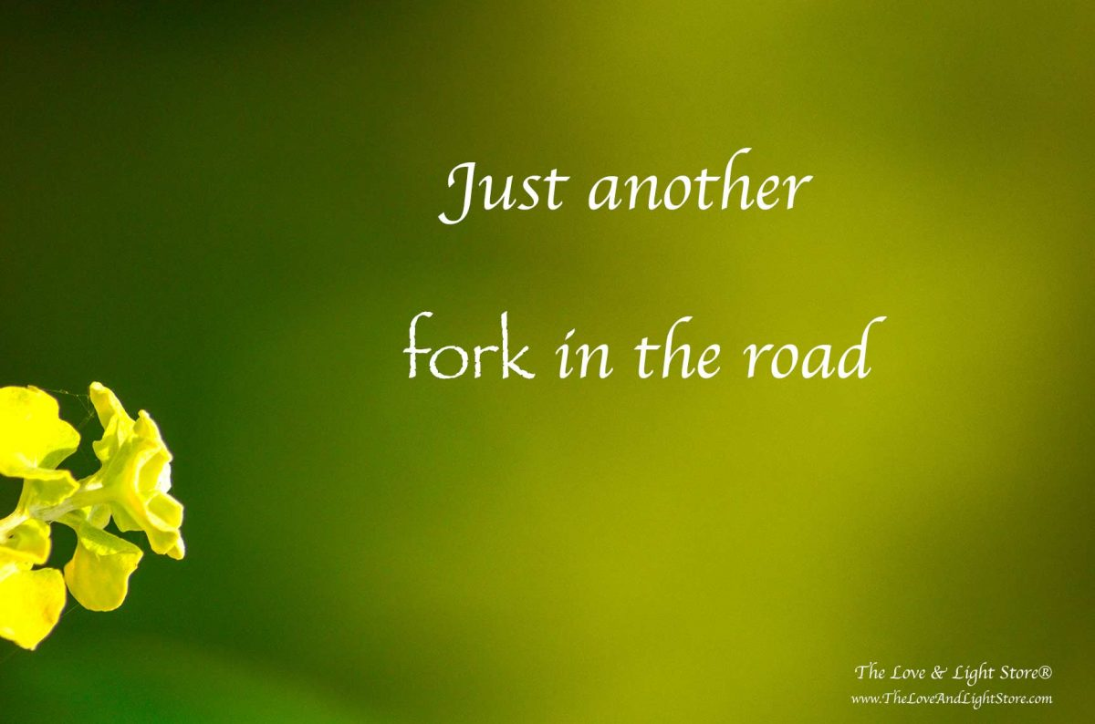 At each fork along the road, I get to choose. I get to choose to hang on to the old or surrender to the new. Life truly is a blessing. Daniel Roquéo