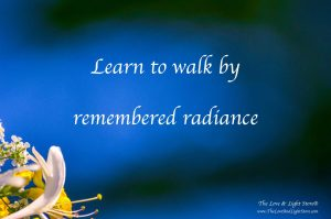 Learn to walk by remembered radiance