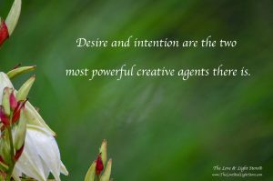 Desire and intention are two of the most powerful creative agents there are