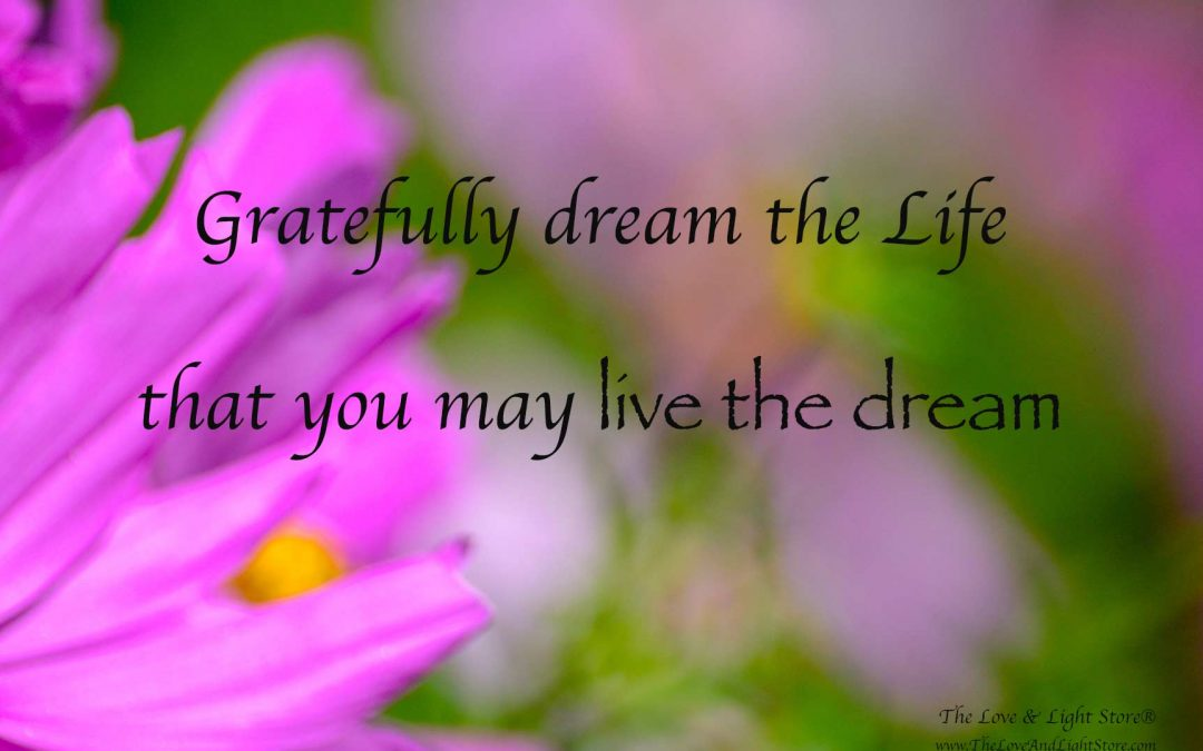 Dream the Life to live the dream