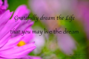 Gratefully dream the Life that you desire and you will live the dream. This is how conscious manifestation happens, this how the sacred laws operate.