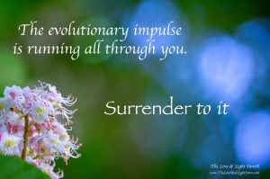 the evolutionary impulse is running all through you. Surrender to it