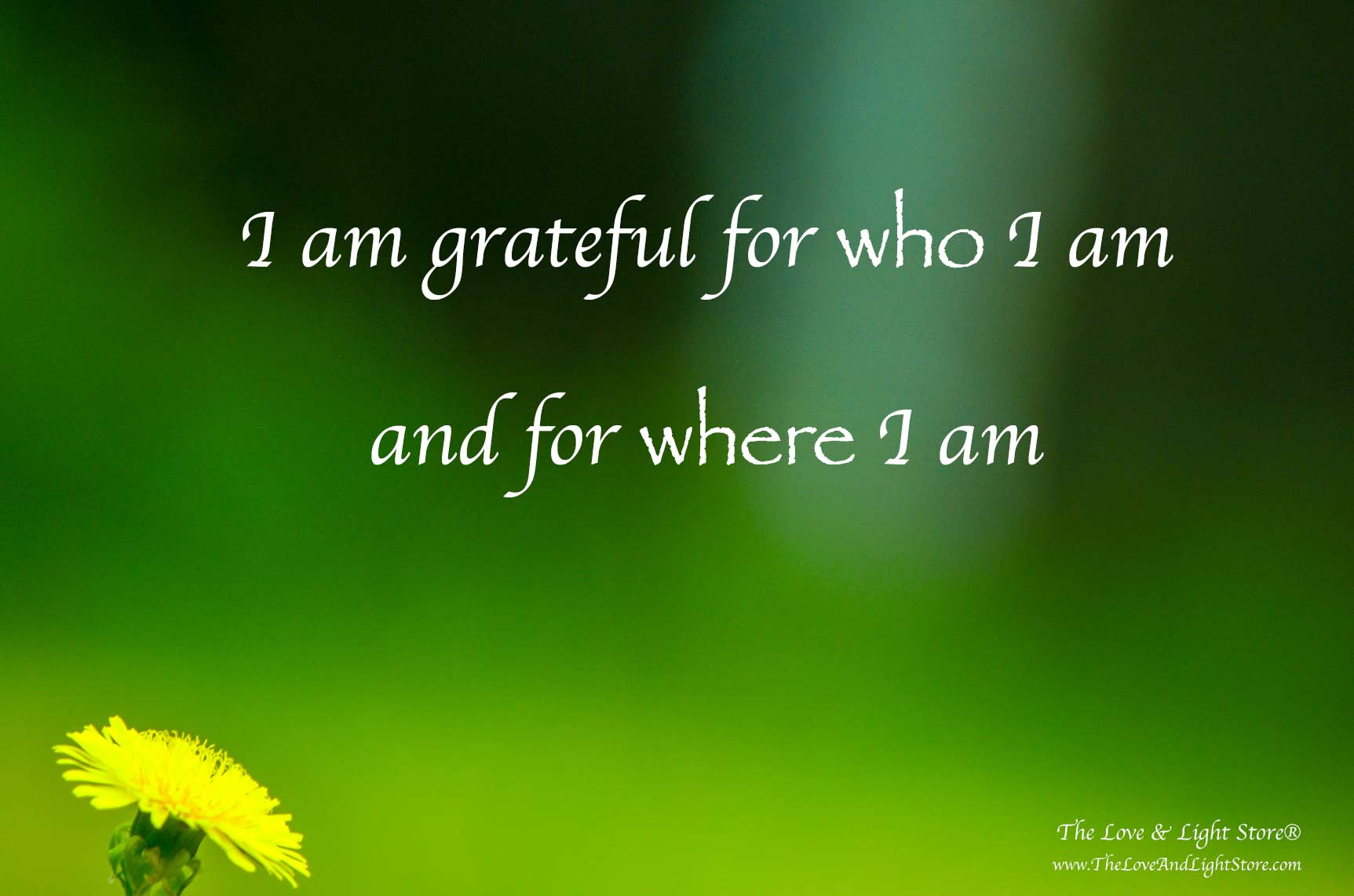 "We invite you to enjoy this personal blog post by Daniel Roquéo, with the title: ""I am grateful for who I am and where I am"""