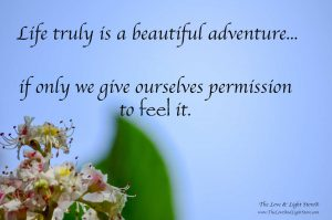 Life truly is a beautiful adventure_ if only we give ourselves permision to feel it