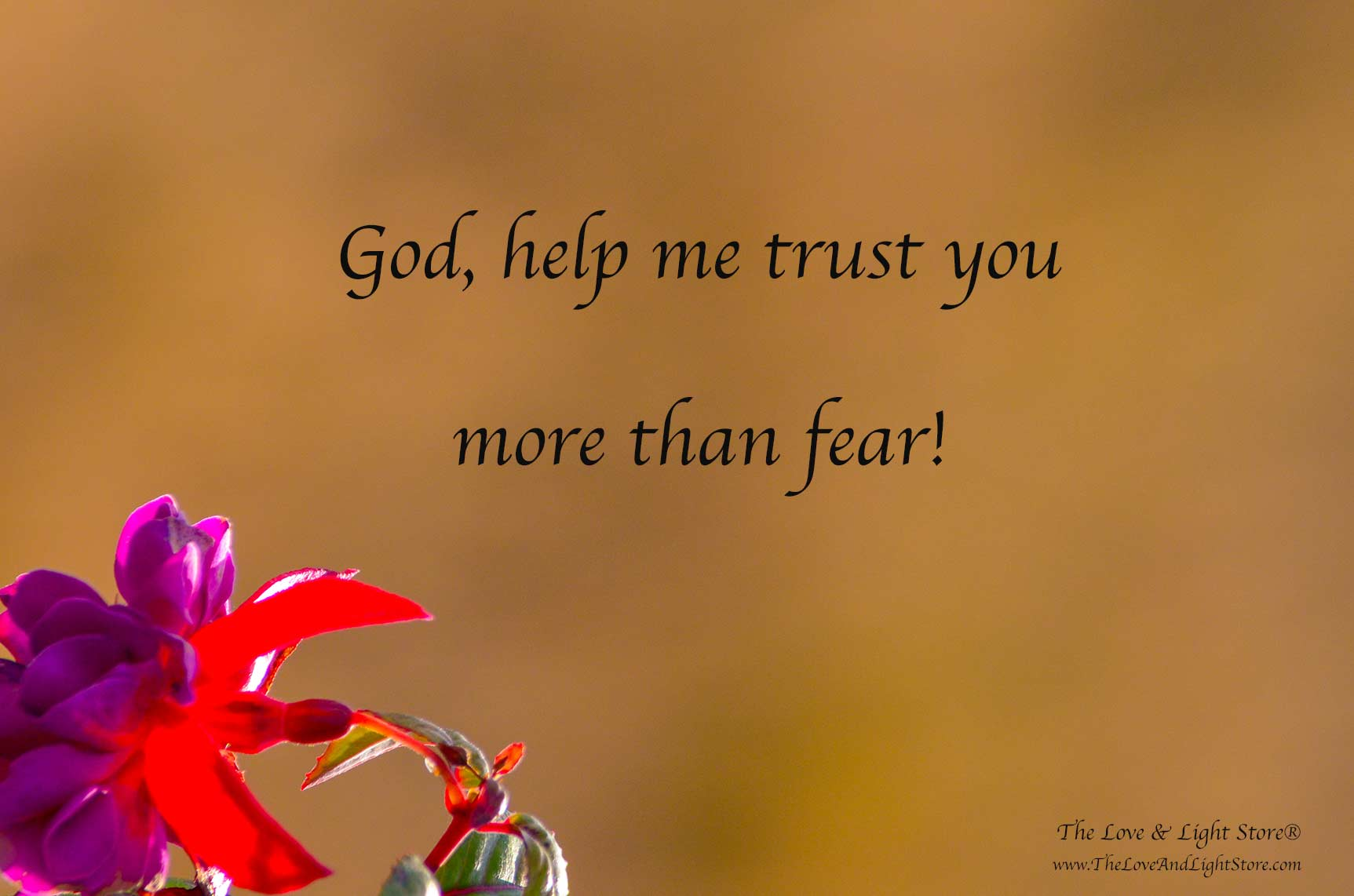 In this challenge, my lesson is to learn to deepen my trust in the goodness of God and the Divine order, rather than trusting the fearful ego.
